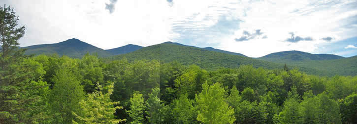 White Mountains Motel View